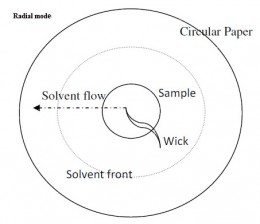 Chromatography research paper