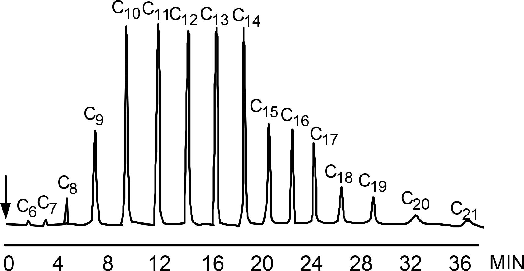 Temperature-Gradient-Chromatogram