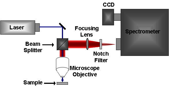 What are the differences between Raman and IR Spectroscopy?