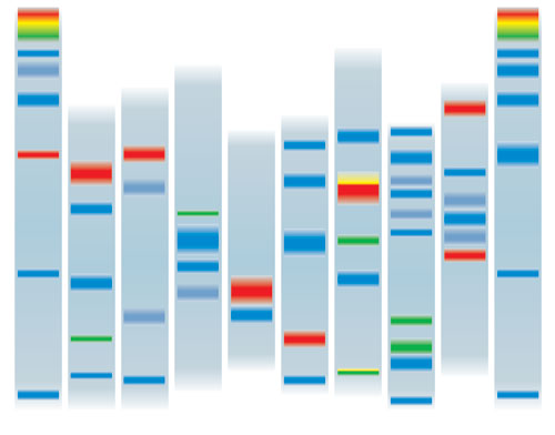What are the advantages of Thin Layer Chromatography over Paper Chromatography?