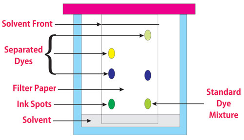Special considerations for identification and detection in Thin Layer Chromatography