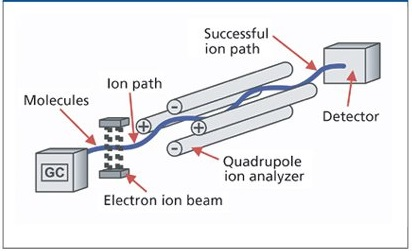 How is Mass Spectroscopy different from other Spectroscopic Techniques?