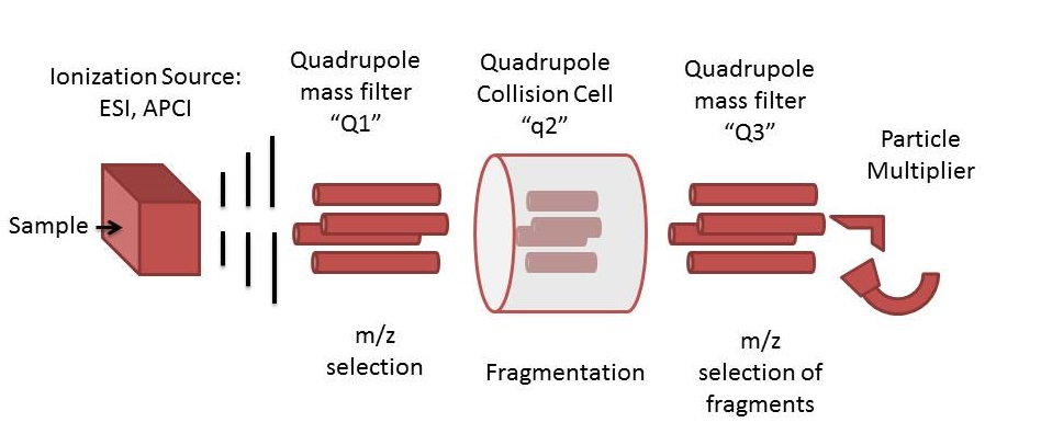 Triple_quadrupole_schematic