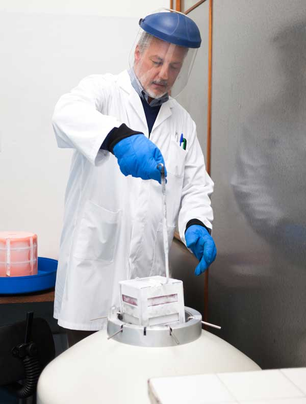 Hazard potential of laboratory Cryogens